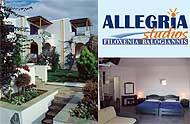 Allegria studios,Kiklades,Andros,Gavrio,with pool,with bar