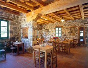 Traditional Guesthouse Fokaeon Farm,Kalavrita,Peloponissos,Achaia,Winter Resort,Greece