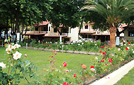The Roses Bungalows, Hotels and Apartments in Halkidiki, Neos Marmaras, Holidays in Halkidiki, Greece Hotels and Apartments