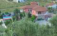 Evia,Anna Studios,Pefki,Beach,Central Greece