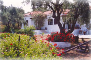 Trikeri Villas,Palio Trikeri,Pelion,Thessalia,Magnessia,Winter Resort,Greece
